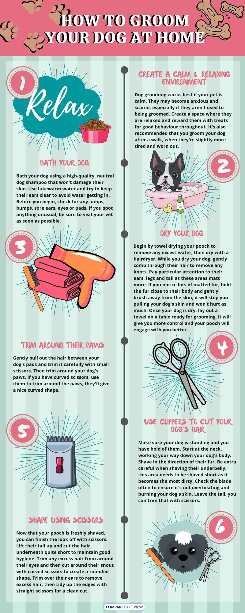 How to Groom Your Dog Infographic